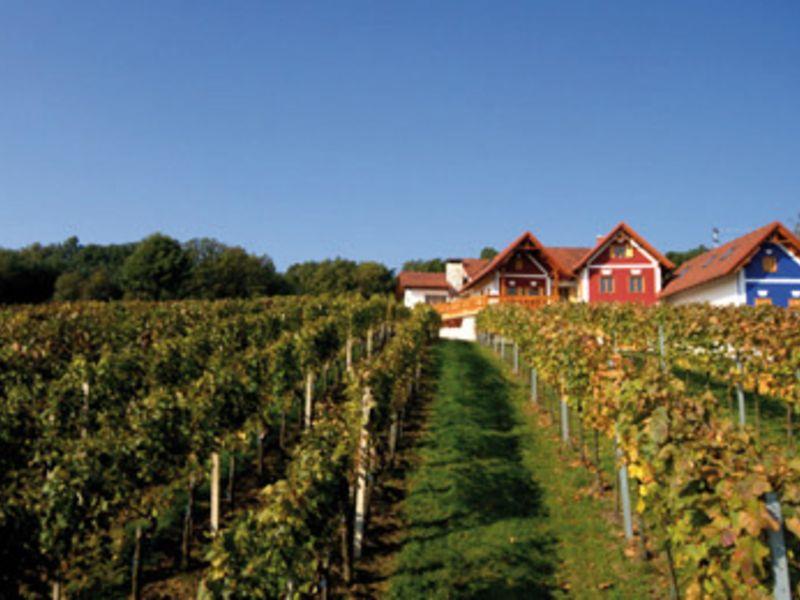 Wein Herczeg
